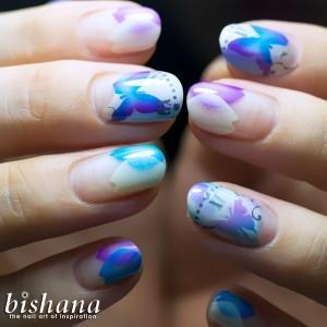 六月の蝶々と花びら2