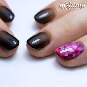 桜&ブラック